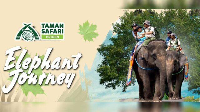 Taman Safari Prigen Pasuruan Tiket Atraksi Akomodasi 2019