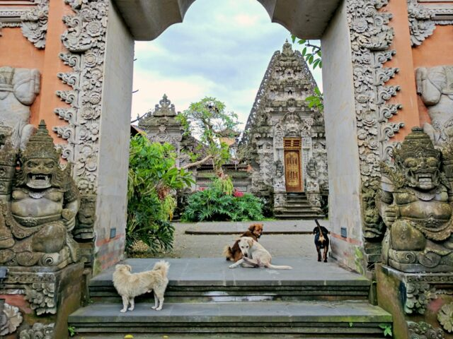 ornament and statues in ubud royal palace
