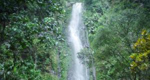 Air terjun Tlogo Muncar