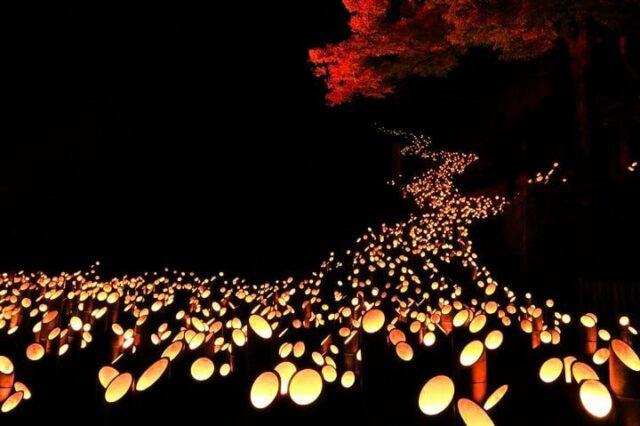Bambu Light Festival