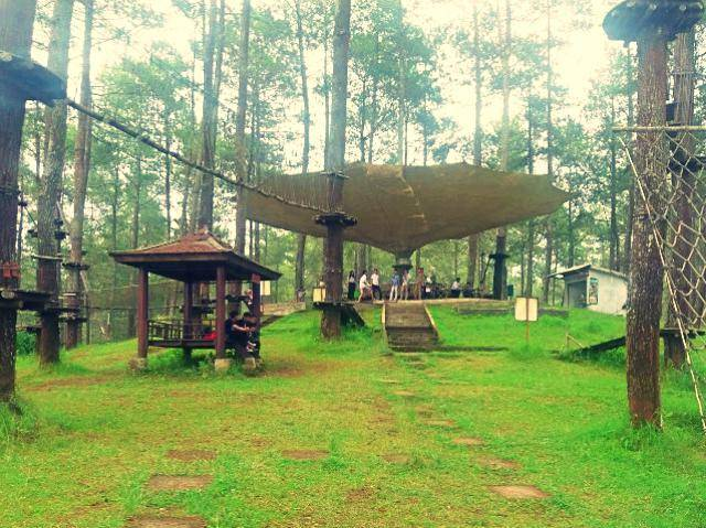 bandung tree top adventure park