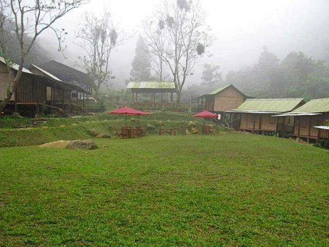 D'jungle Private Camp