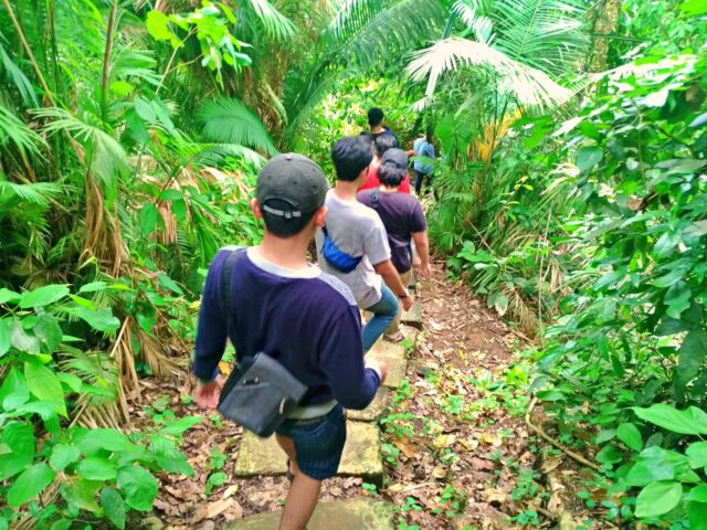 trekking in meru betiri national park