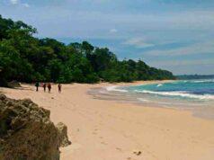 G Land Plengkung Beach
