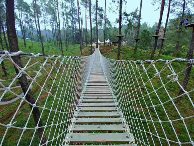 sky bridge orchid forest cikole