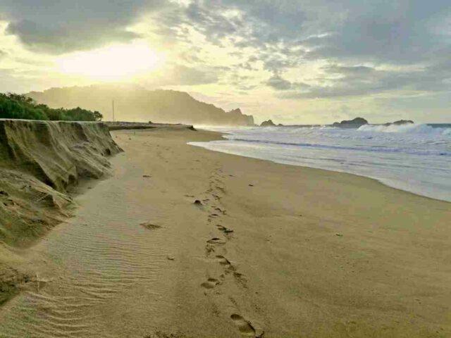 sukamade white sand beach