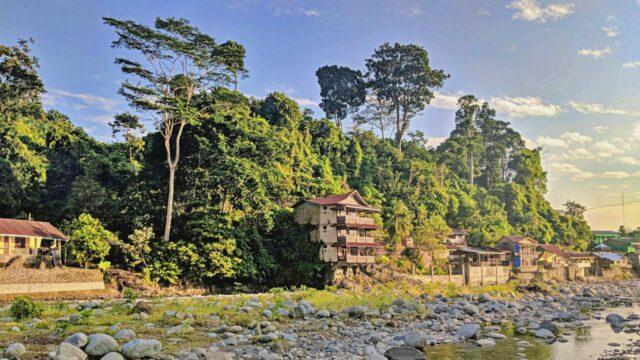 cheap guesthouse bohorok river