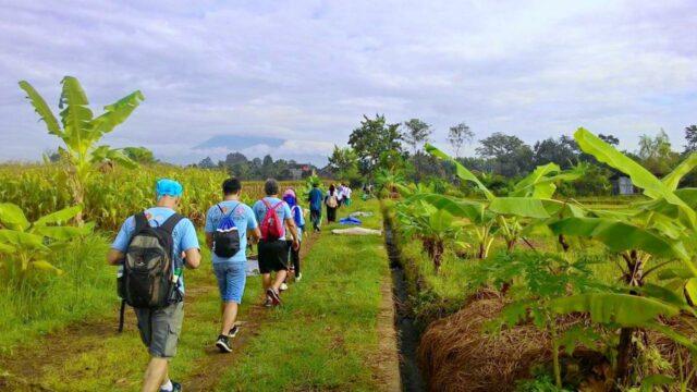 jogja international heritage walk scenic route
