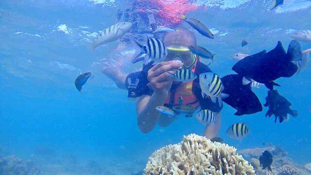 bulu babi snorkeling spot