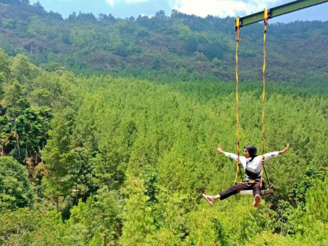 swing with mountain view