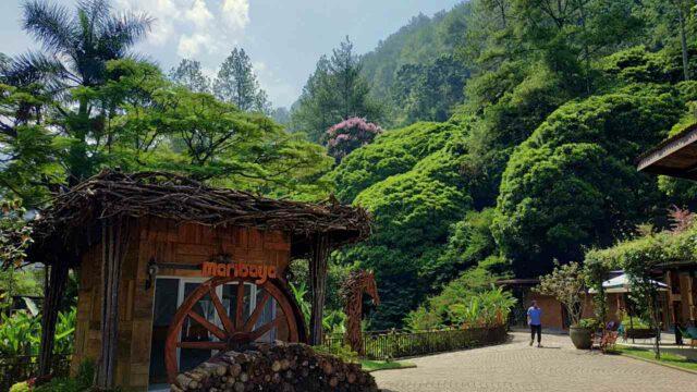 Maribaya vast green trees