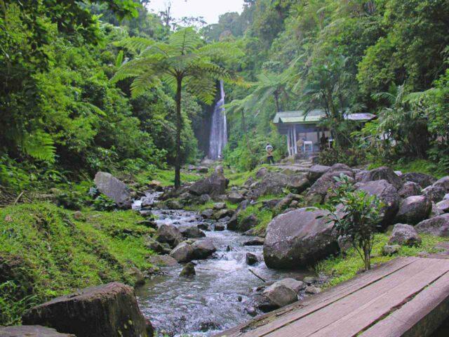ciismun waterfall in cibodas botanical garden