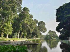 gunting pond