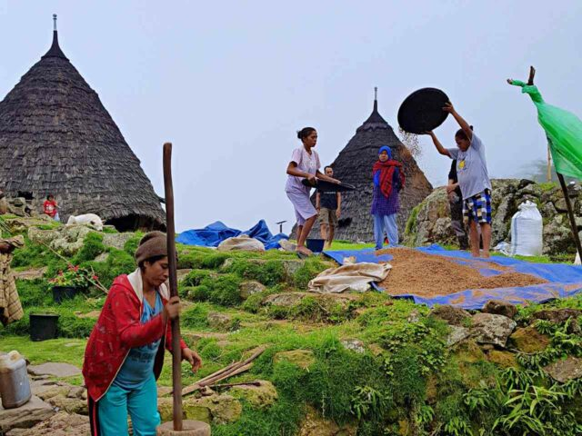 wae rebo village daily activity