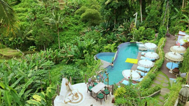 pool overlooking the tegalalang valey