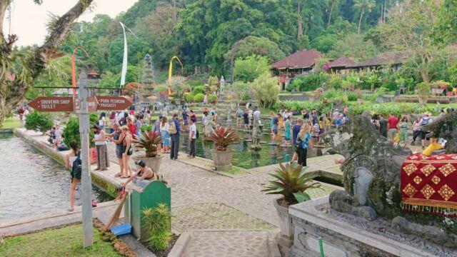 the big koi pond area